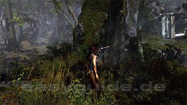 Tomb Raider Geisterjägerin